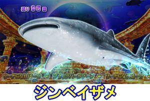 CR大海物語4 BLACK キャラ通過予告 ジンベイザメ